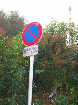 12 大池遊園の駐車禁止.jpg